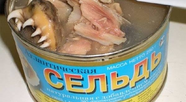 [Image: Canned-WTF-599x330.jpg]